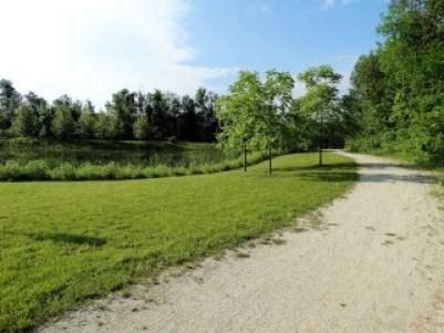 Collingwood Real Estate - Lockhart Meadows Subdivision