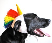 12 Unique Dog Halloween Costumes  2014 | Live. Pant. Play