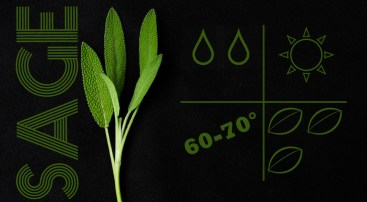 liveseasoned_spring2014_herbs-8
