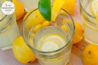 liveseasoned_spring2014_lemonvodkawater4