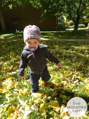 liveseasoned_fall2014_littleahat2_wm