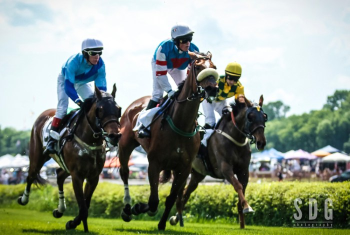 I Shot Your Horse:: 2014 Iroquois Steeplechase