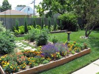 Raised Beds for Easy, Low-Maintenance Backyard Gardens