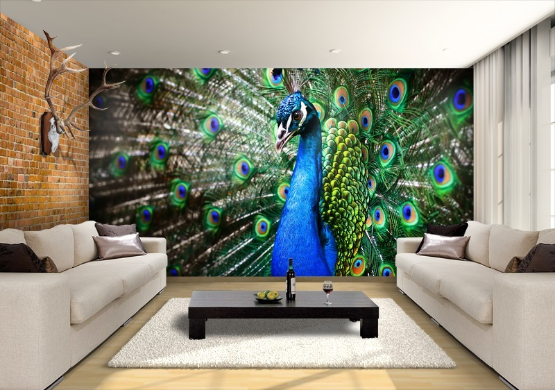 3d Wallpapers For Home Interiors Inspiring Peacock Beauty For Your Home