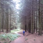 Llandegla Forest - one of the largest privately owned woodlands in Wales