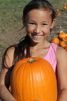pumpkin ny