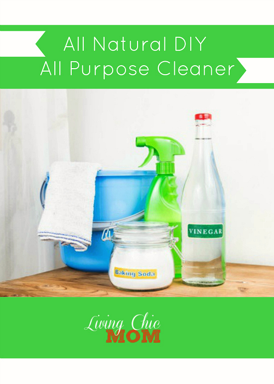 All Natural DIY - All Purpose Cleaner