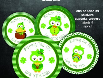 St Patrick's Day Owl Stickers (cake toppers) Printables