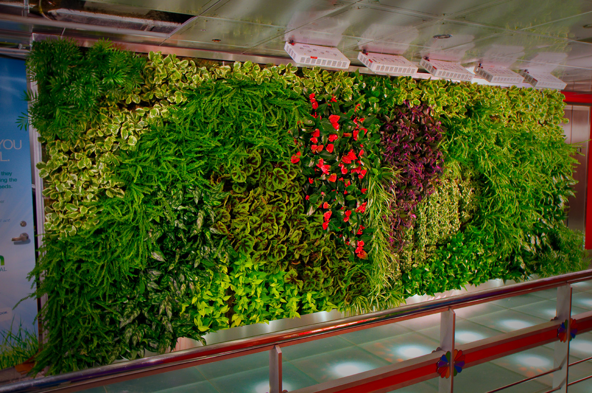 Vertikal Gardinen Vertical Gardens A Eco Friendly Way To Decorate Your Home