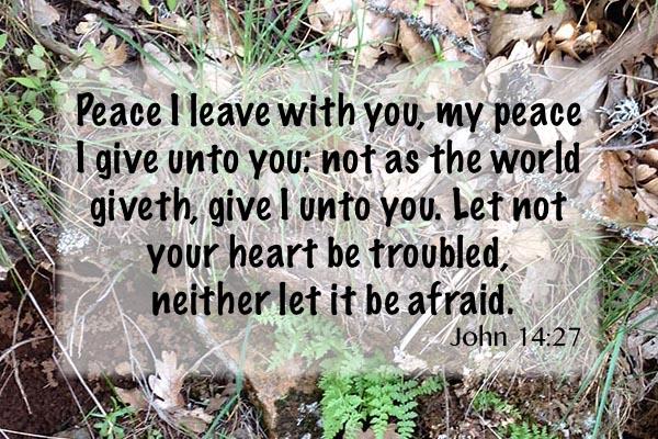 john14-27