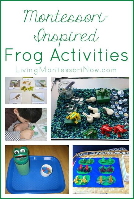 Leap Year Calendar Leap Years Calendar 365 Montessori Monday – Montessori Inspired Frog Activities