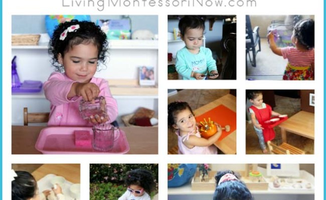 Favorite Montessori Practical Life Activities For Toddlers