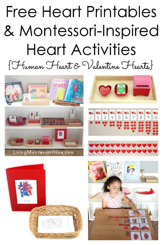 Free Heart Printables and Montessori-Inspired Heart Activities