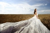 bride wedding dress 300x200