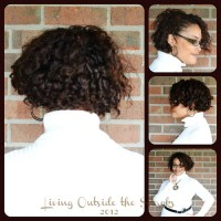 Easy Twist Out Tutorial {Natural Hair}  Living Outside ...