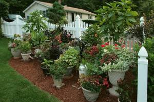Use Garden Containers to Plant a Successful Garden