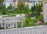 An Introduction to Intensive Green Roofs