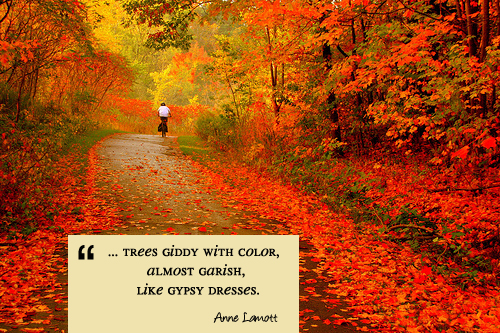 Fall In Maine Wallpaper A Quote For Today Autumn Living Vintage