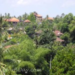 Walk In Ubud Village View