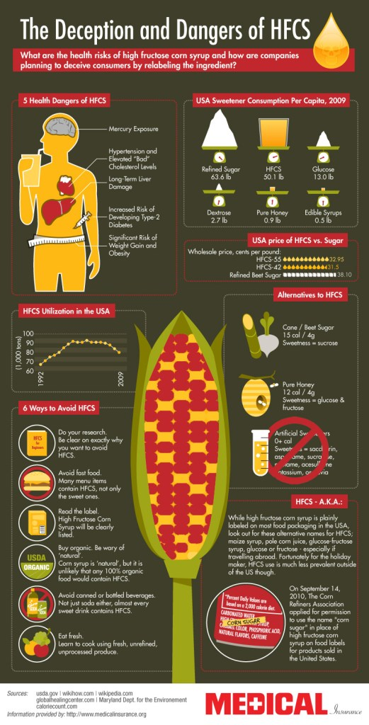 The-Dangers-of-High-Fructose-Corn-Syrup-Infographic