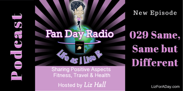 Fan Day Radio Podcast 029 Same  Same But Different T - Shared by LizForADay.com