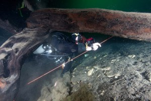 Cave diving training in Goulden's Sinkhole