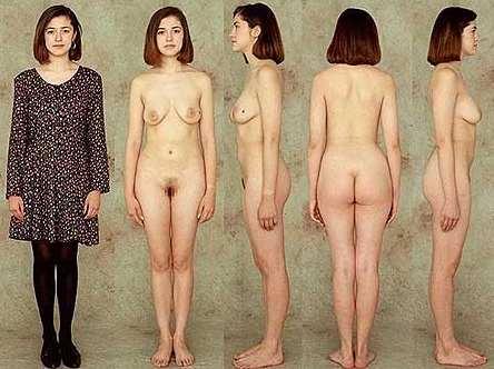 real female anatomy models