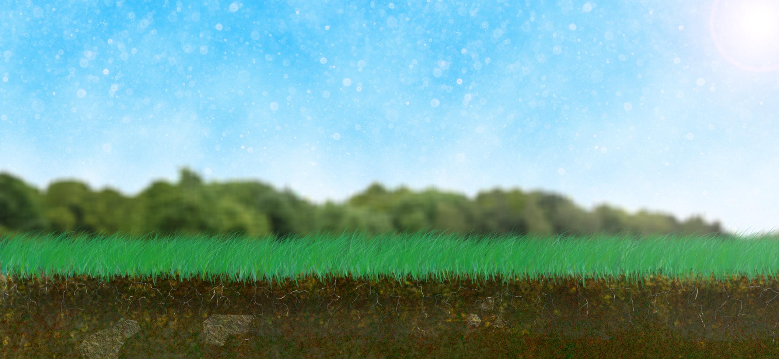 Creative environments landscape co edible gardens - Creative Environments Landscape Co Edible Gardens 5