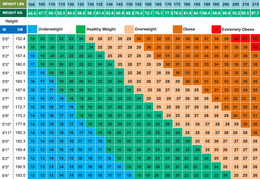 bmi scale chart - Intoanysearch