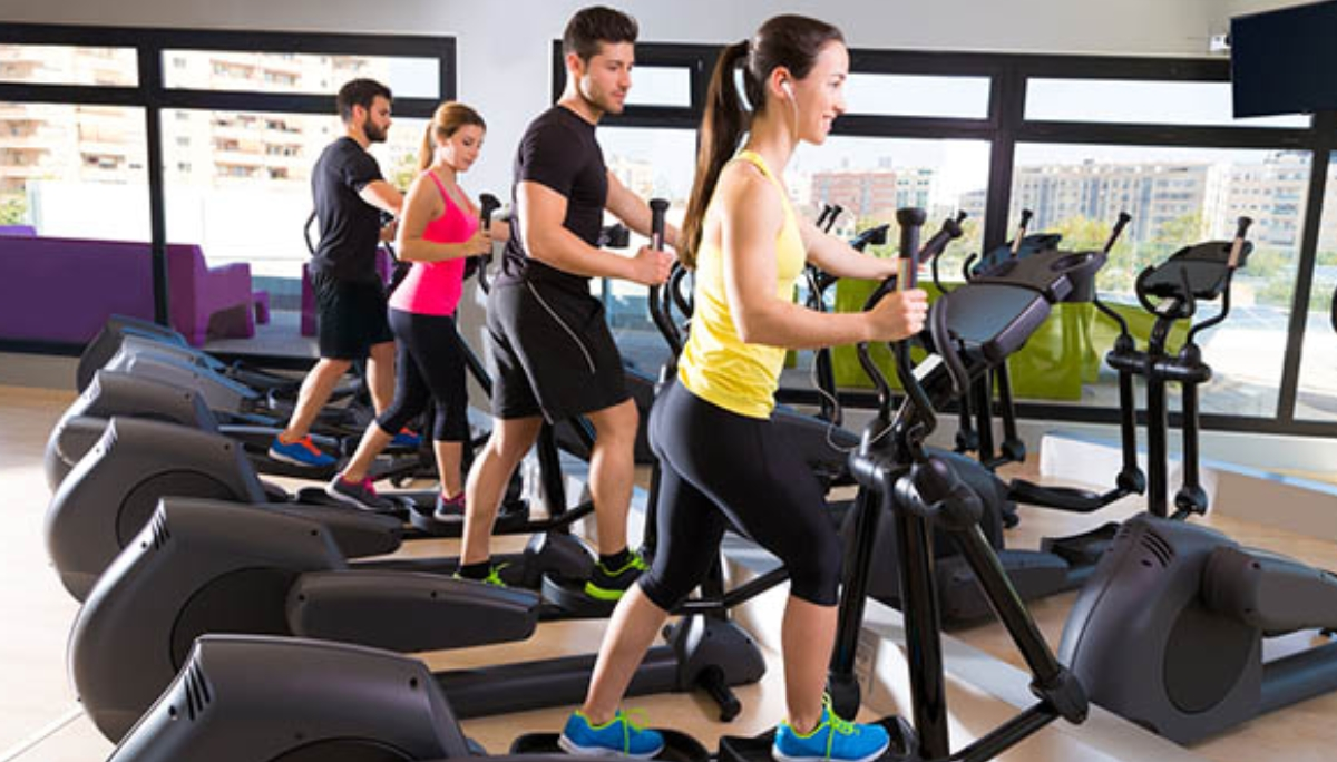 Pedana Vibrante Bosco Fitness Archivi Fit Express Palestre Low Cost In Franchising