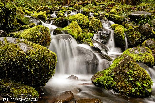 Falls Wallpaper Waterfall Olympic National Park Wa Sol Duc Falls 187 Local