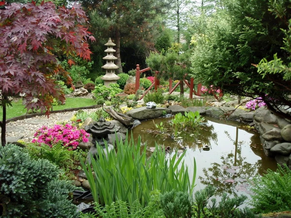 Petit Jardin Japonais Photo | Jardin Minéral Et Végétal Jardin ...