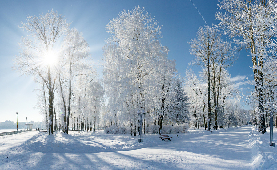 March 2018 Cute Full Screen Desktop Wallpapers Living On Earth Sounds Of Winter