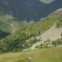 Südtiroler Krautsalat