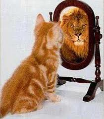 chat:lion miroir