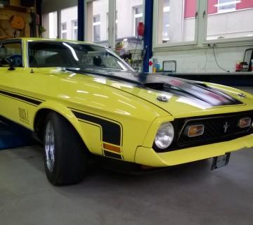 Car (17)