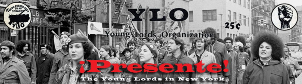 ylp-web-banner-long