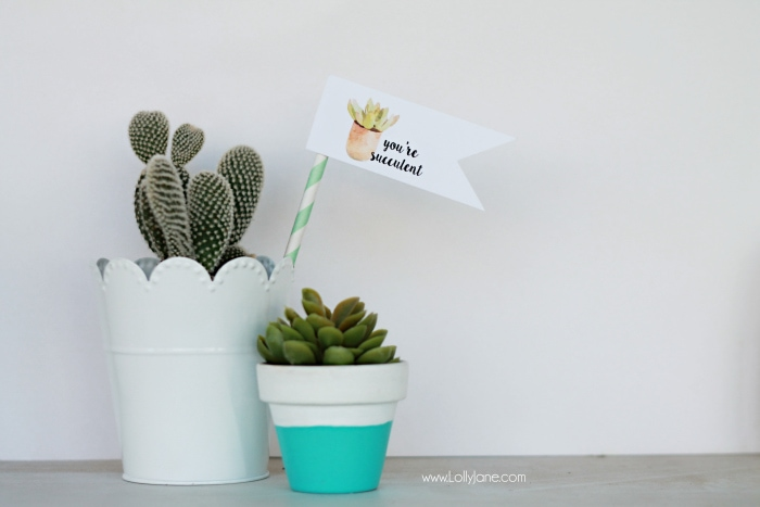 youre succulent free printable tags - Lolly Jane