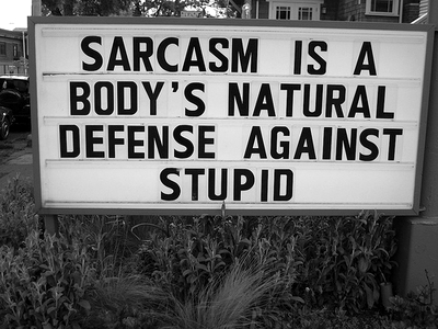 Sarcasm Is A Body's Natural Defense Against Stupid.