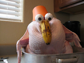 Strange Funny Turkey