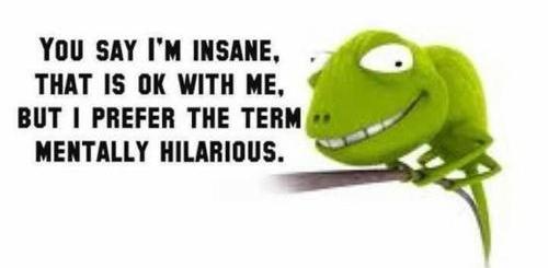 I'm not insane, I'm mentally hilarious.