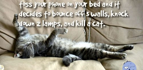 That awkward moment when your phone kills your cat.