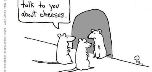 Lets talk about cheeses.