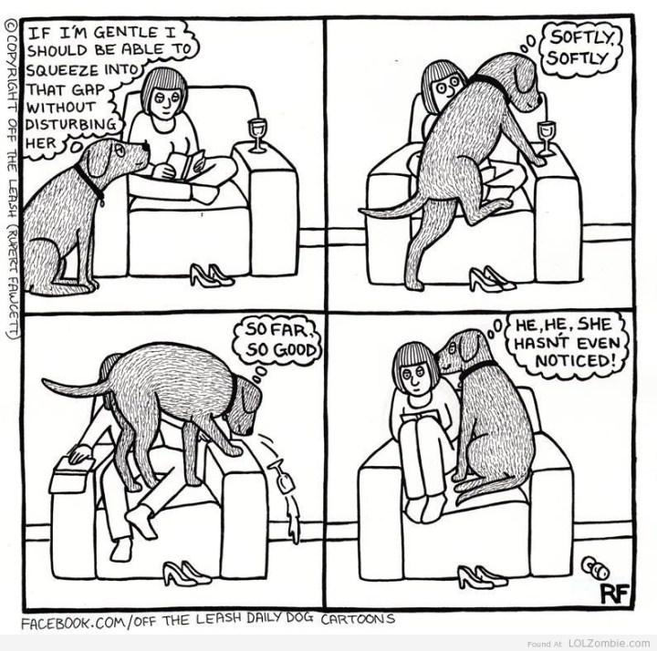 Ακόμη και οι μεγάλοι σκύλοι...