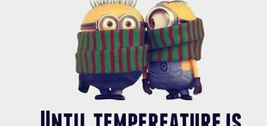 Minions Bundled Up