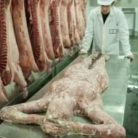 Abren carnicería humana en Londres como publicidad viral de `Resident Evil 6´