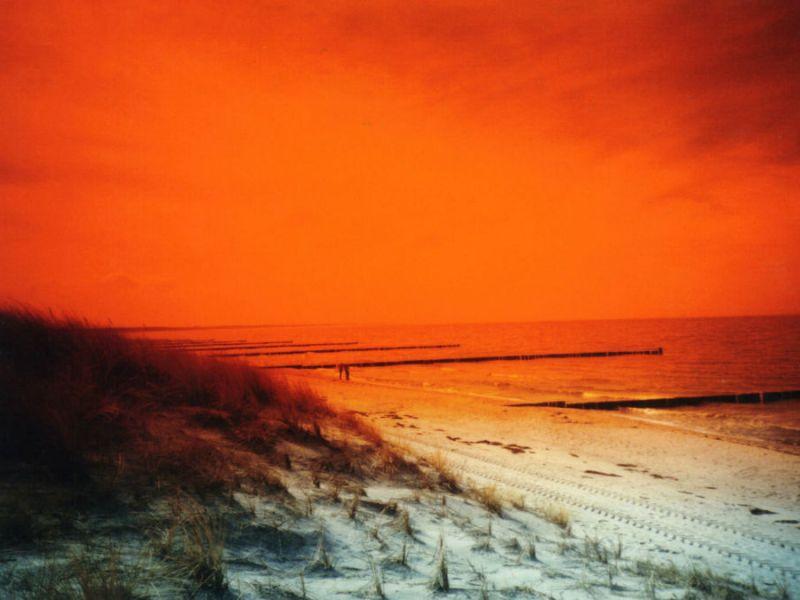 Strand rot