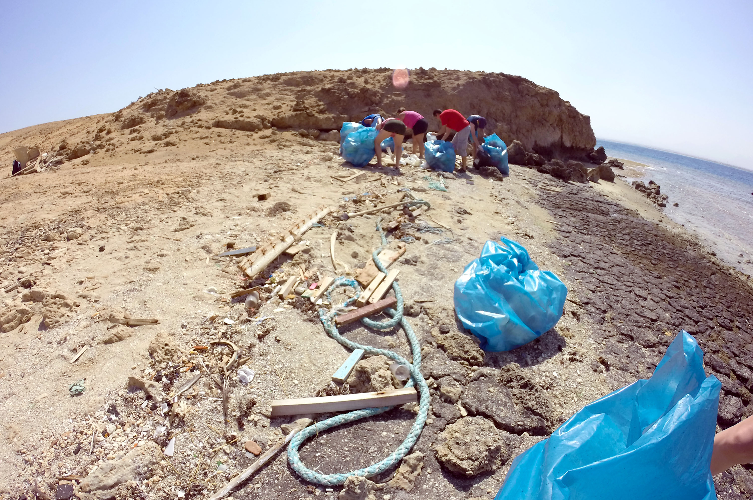 Padi Clean Up Day Hurghada