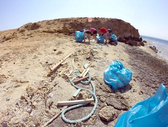 Padi Clean Up Day Hurghada