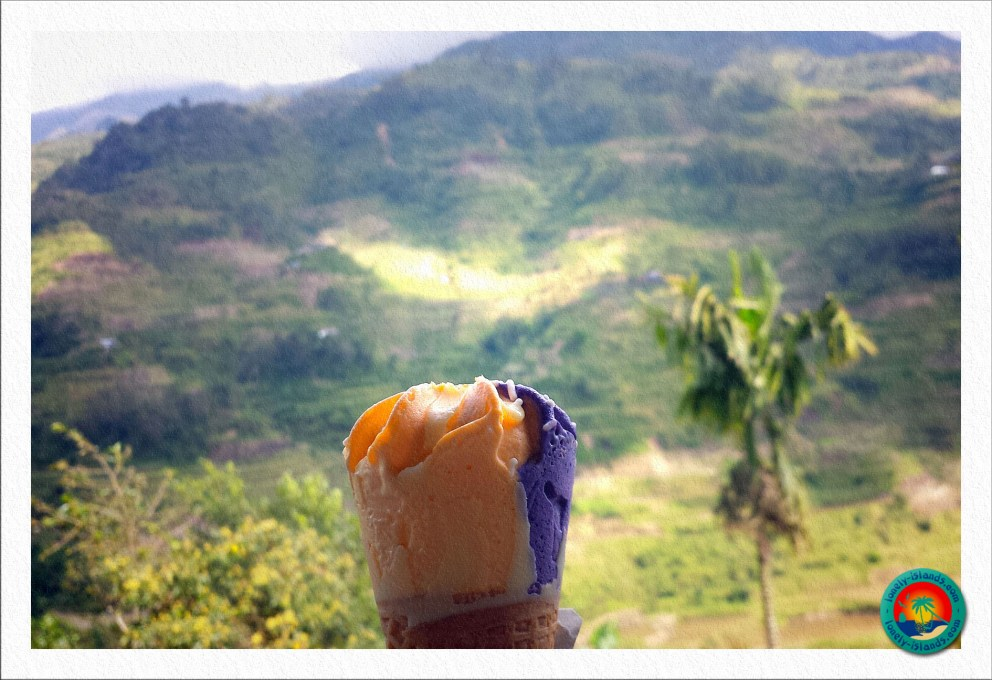 Ube-Mango Icecream
